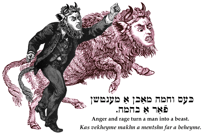 Yiddish: Anger and rage turn a man into a beast.
