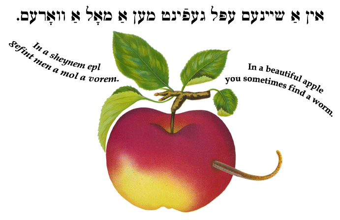 Yiddish: In a beautiful apple you sometimes find a worm.