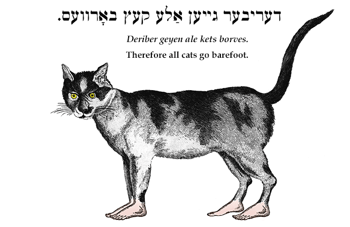 Yiddish: Therefore all cats go barefoot.