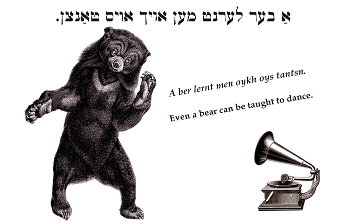 Yiddish: Even a bear can be taught to dance.