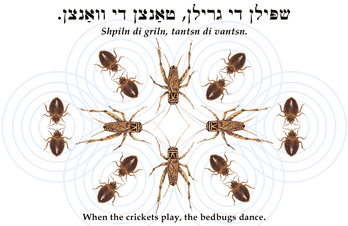 Yiddish: When the crickets play, the bedbugs dance.