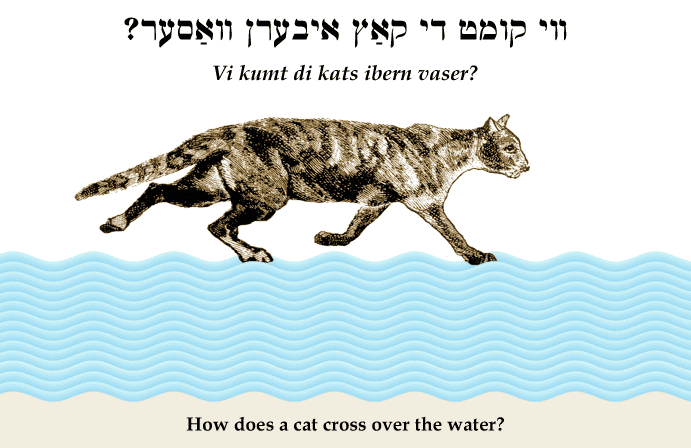 Yiddish: How does a cat cross over the water?