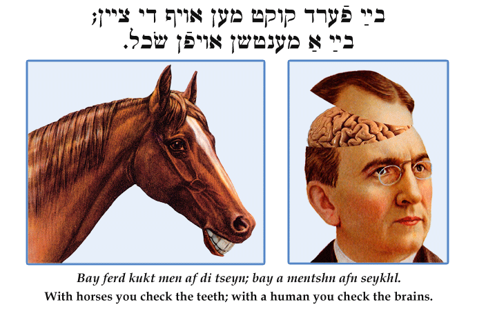 Yiddish: With horses you check the teeth; with a human you check the brains.