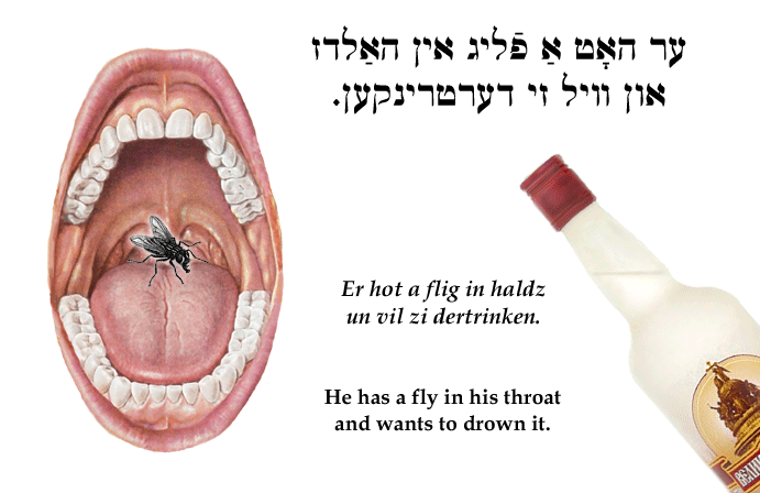 Yiddish: He has a fly in his throat and wants to drown it.