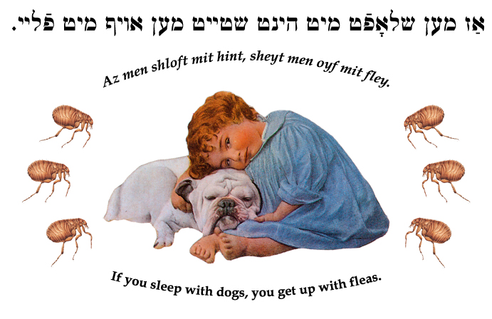 Yiddish: If you sleep with dogs, you get up with fleas.