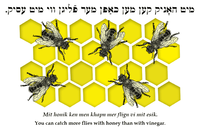 Yiddish: You can catch more flies with honey than with vinegar.