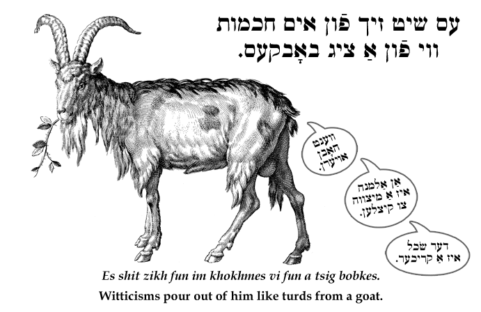 Yiddish: Witticisms pour out of him like turds from a goat.