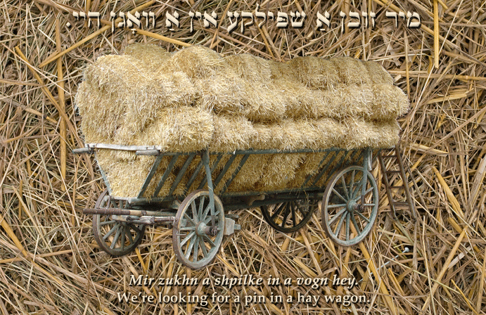 Yiddish: We're looking for a pin in a hay wagon.