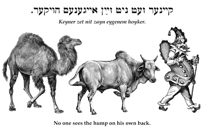 Yiddish: No one sees the hump on his own back.
