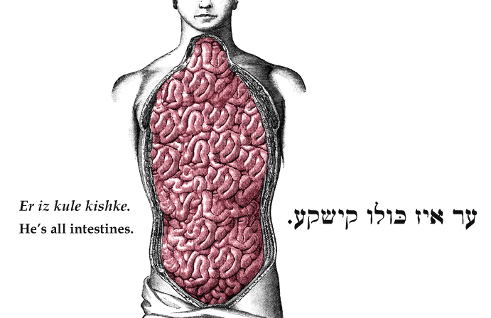 Yiddish: He's all intestines.