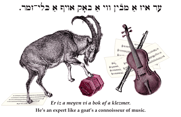 Yiddish: He's an expert like a goat knows about klezmer.