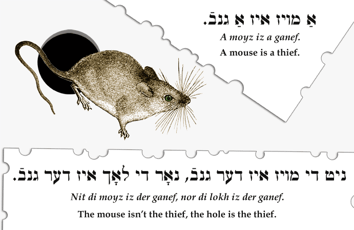 A mouse is a thief. / The mouse isn't the thief, the hole is the thief.