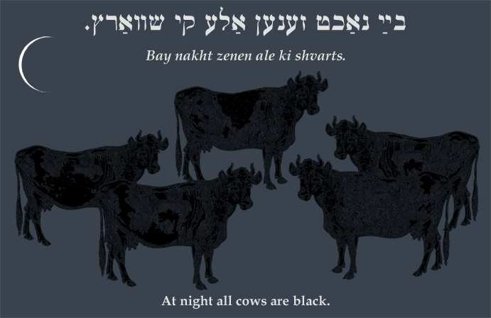 Yiddish: At night all cows are black.