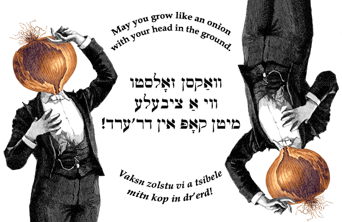 Yiddish: May you grow like an onion with your head in the ground.