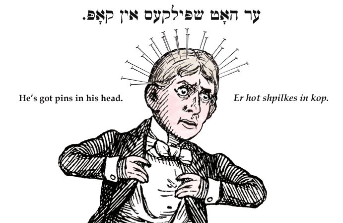 Yiddish: He's got pins in his head.