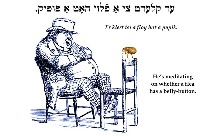 Yiddish: He's meditating on whether a flea has a belly-button.