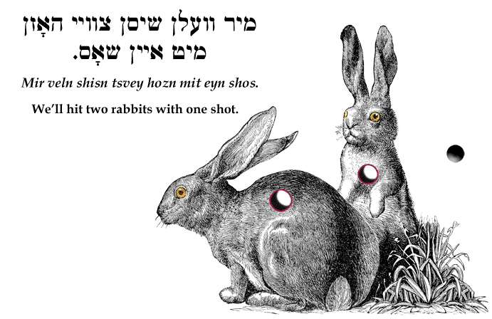 Yiddish: We'll hit two rabbits with one shot.