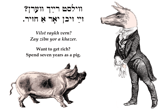 Yiddish: Want to get rich? Spend seven years as a pig.