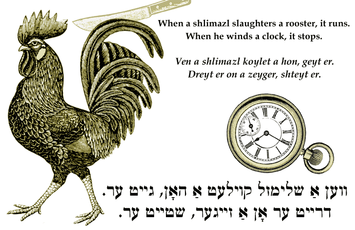 Yiddish: When a shlimazl slaughters a rooster, it runs. When he winds a clock, it stops.