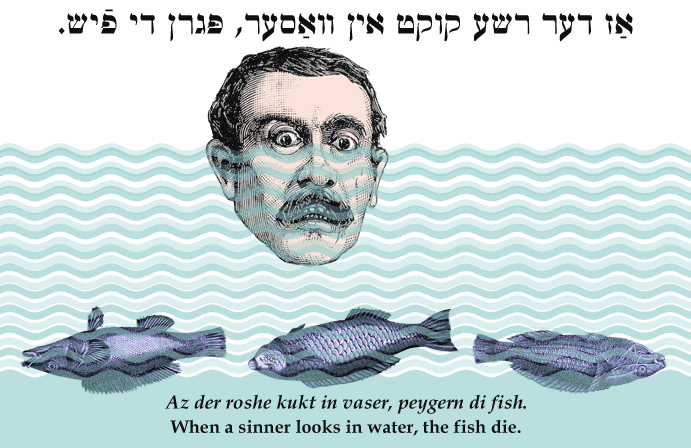 Yiddish: When a sinner looks in water, the fish die.