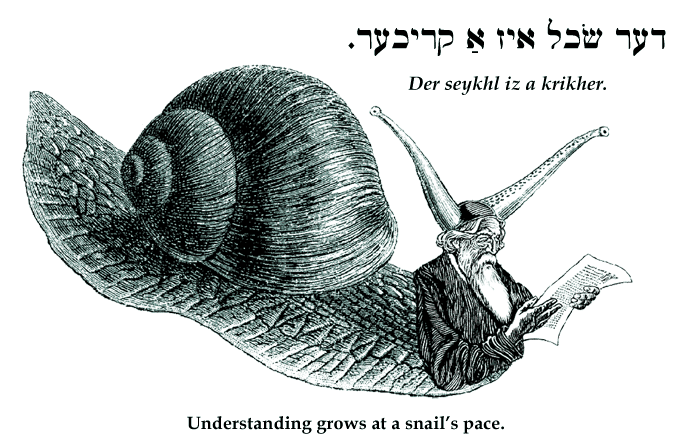 Yiddish: Understanding grows at a snail's pace.