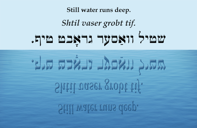 Yiddish: Still water runs deep.